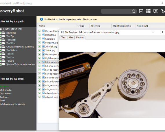 RecoveryRobot Hard Drive Recovery - Preview an Image