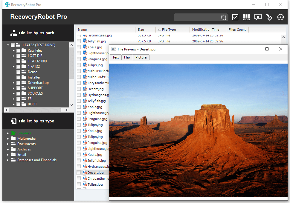 RecoveryRobot Pro - Preview an image